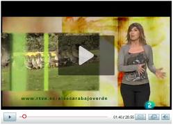 Video del programa