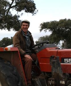 Pastor cerdos ibericos y cuidador de la dehesa