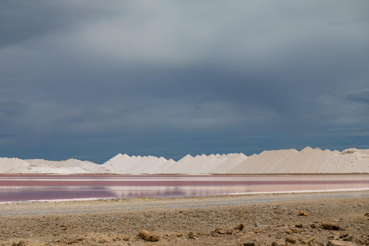 ¿Qué sal se usa para curar jamones?